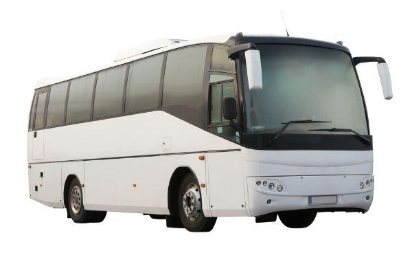 Bus fleet insurance.